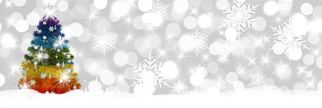 christmas-2985527_640.jpg